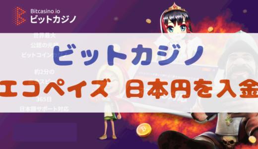 【画像付き】ビットカジノにecoPayz(エコペイズ)から日本円を入金する方法
