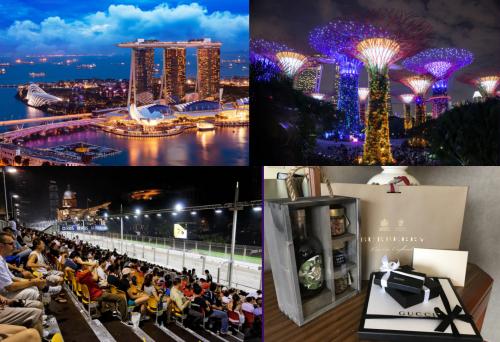 vip travel in singapore